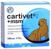Cartivet + MSM 100 tabl.