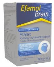 Efamol Brain 90 kaps.