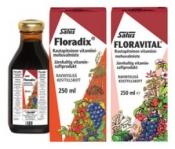 Salus Floradix rautavalmiste 500 ml